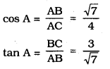KSEEB SSLC Class 10 Maths Solutions Chapter 11 Introduction to Trigonometry Ex 11.1 6