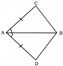 KSEEB Solutions for Class 9 Maths Chapter 5 Triangles Ex 5.1 1