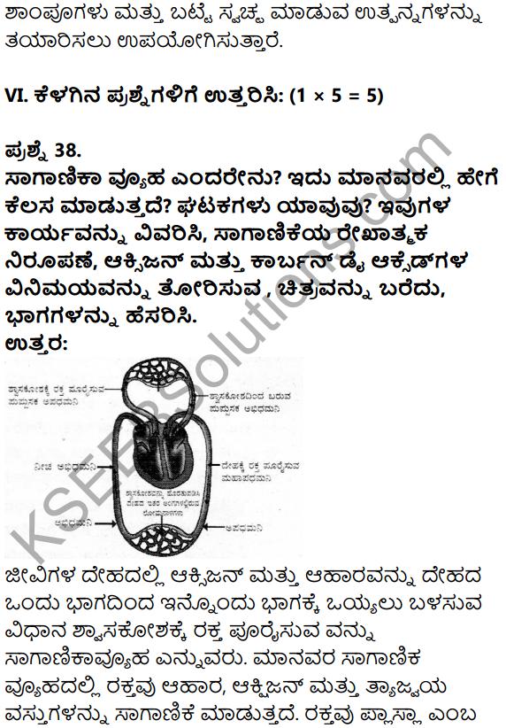 Karnataka SSLC Science Model Question Paper 3 in Kannada Medium - 27