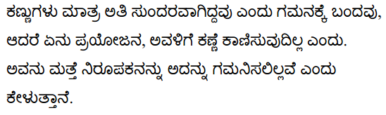 The Eyes are not Here Summary in Kannada 2
