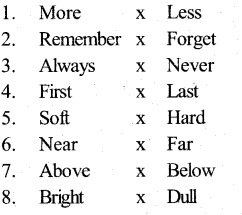 KSEEB Solutions for Class 5 English Prose Chapter 1 Love for Animals 6