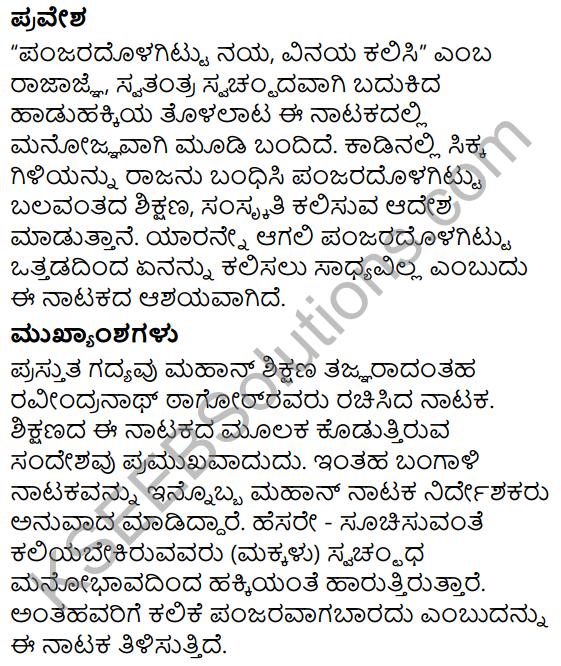 Panjara Saale Summary in Kannada 10