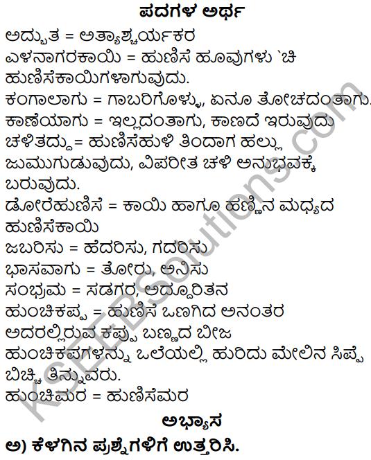 Siri Kannada Text Book Class 5 Solutions Gadya Chapter 6 Naanu Mattu Hunchimara 1