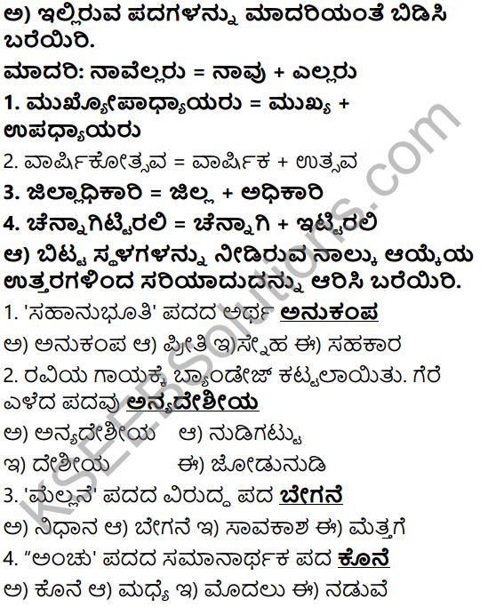 Tili Kannada Text Book Class 6 Solutions Gadya Chapter 5 Sahasi Monalisa 9