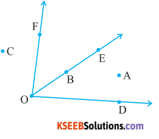 KSEEB Solutions for Class 6 Maths Chapter 4 Basic Geometrical Ideas Ex 4.3 2