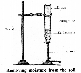 KSEEB Solutions for Class 7 Science Chapter 9 Soil 31