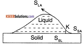 1st PUC Physics Question Bank Chapter 10 Mechanical Properties Of Fluids img 1